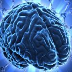 Những sự thật gây sốc về sức mạnh khủng khiếp của bộ não con người
