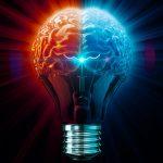 Những suy nghĩ Sai Lầm và Sự Thật về Não Bộ con người có thể bạn chưa biết